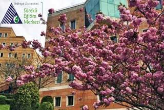 Yeditepe Üniversitesi İngilizce Kursu
