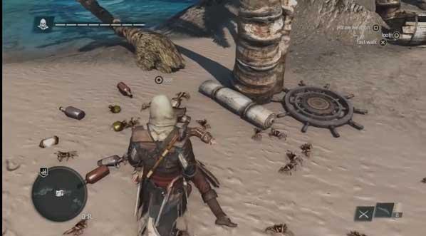 Assasin's Creed 4