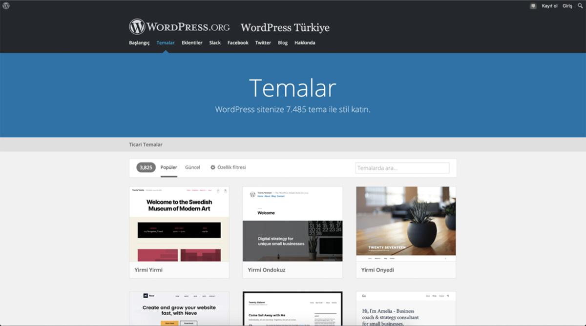 WordPress Teması Nedir?